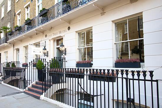 Londen_Lime_tree_1.jpg
