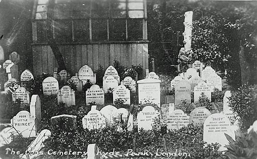 Londen_pet_cemetery_1.jpg